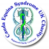 Cauda Equina Syndrome Online Support Network