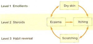 Three Levels of Treatment for The Vicious Circle of Chronic Eczema